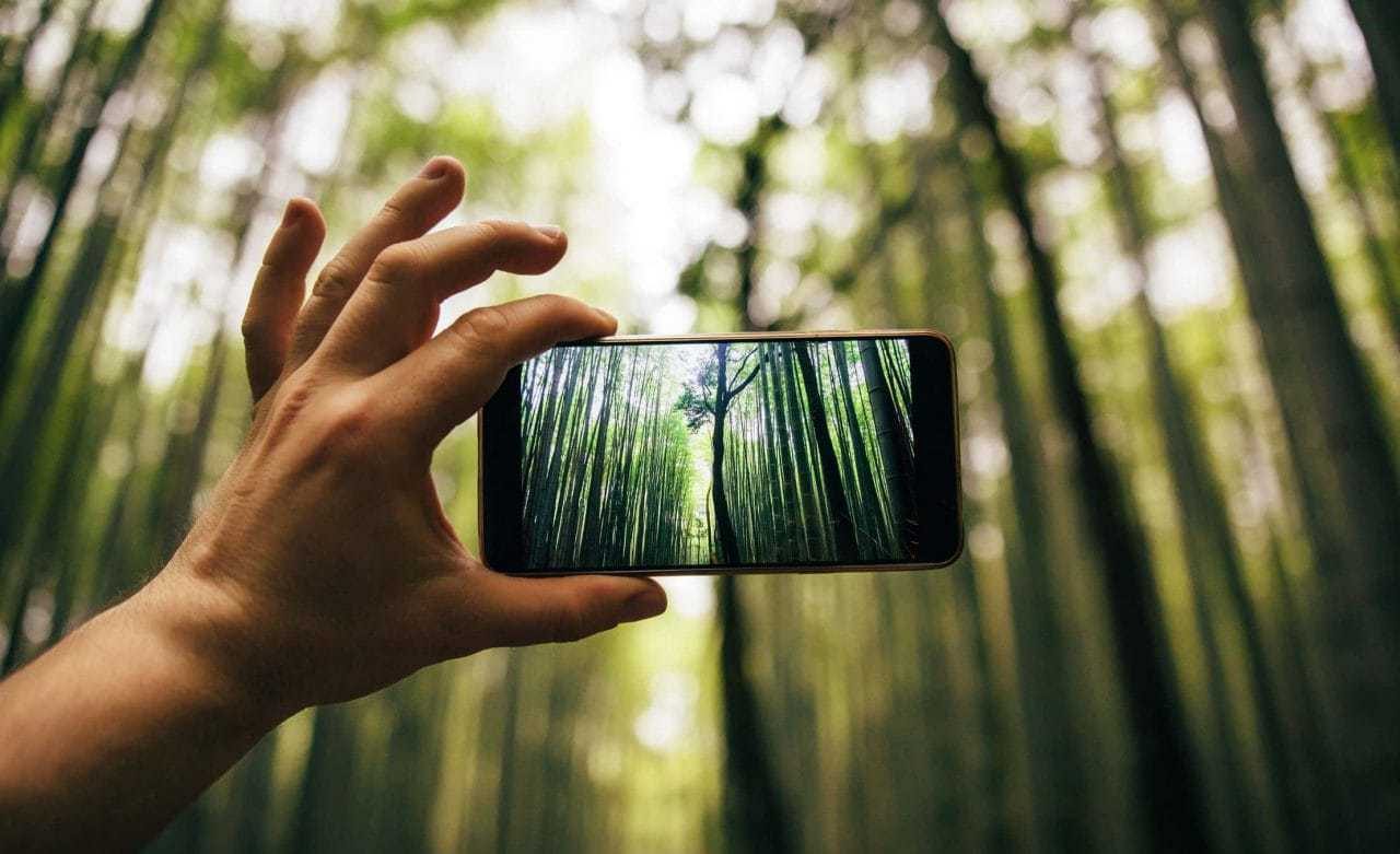Essential Photography Equipment for Smartphones