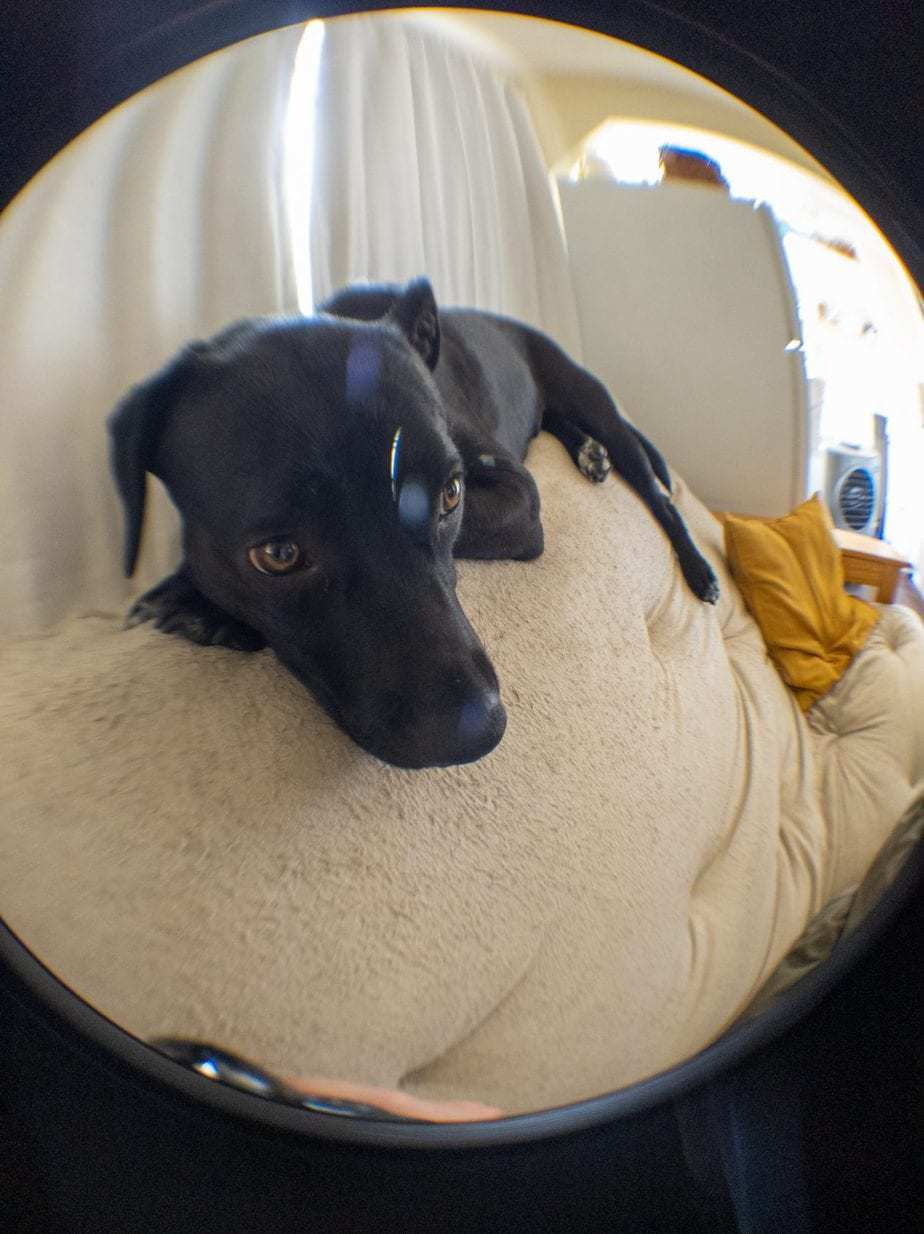 Fish-Eye Lens Example